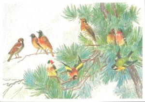 Postkarte Sortiment Weihnachten beglittert 6Wg041