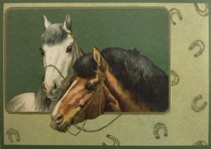 Glückwunschpostkarte ohne Veredelung (A6) 6Gn075