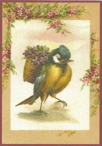 Postkarte vermenschlichte Tiere beglittert 6Vg013