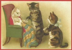 Postkarte vermenschlichte Tiere (A6) ohne unveredelt 6Vn015