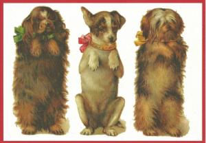 Postkarte vermenschlichte Tiere (A6) ohne unveredelt 6Vn014
