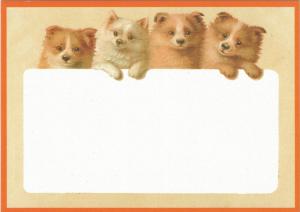 Postkarte vermenschlichte Tiere (A6) ohne unveredelt 6Vn027