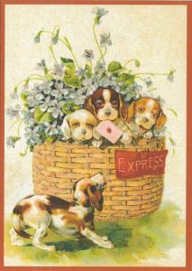 Postkarte vermenschlichte Tiere beglittert 6Vg030