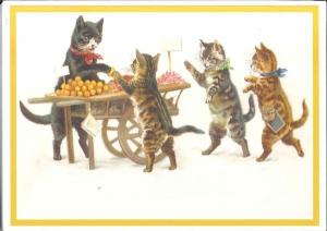 Postkartenset Katzen M3